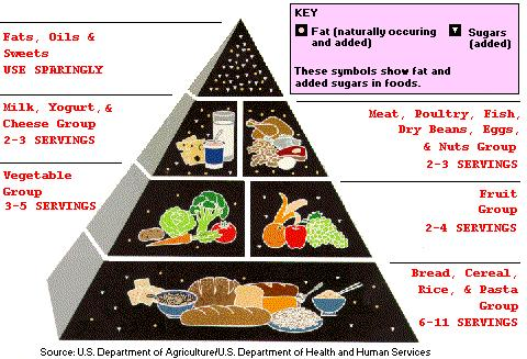 Low Calorie Diet Food Pyramid For Effective Weight Loss